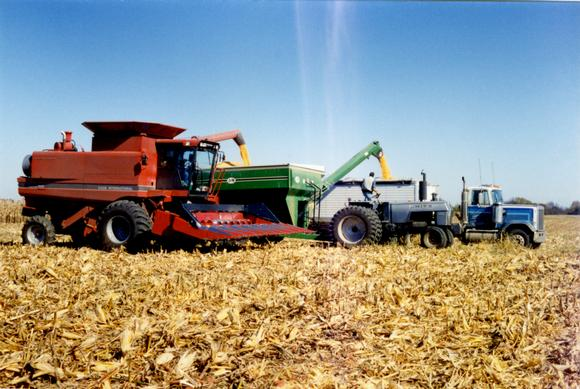 Picture of combine in field